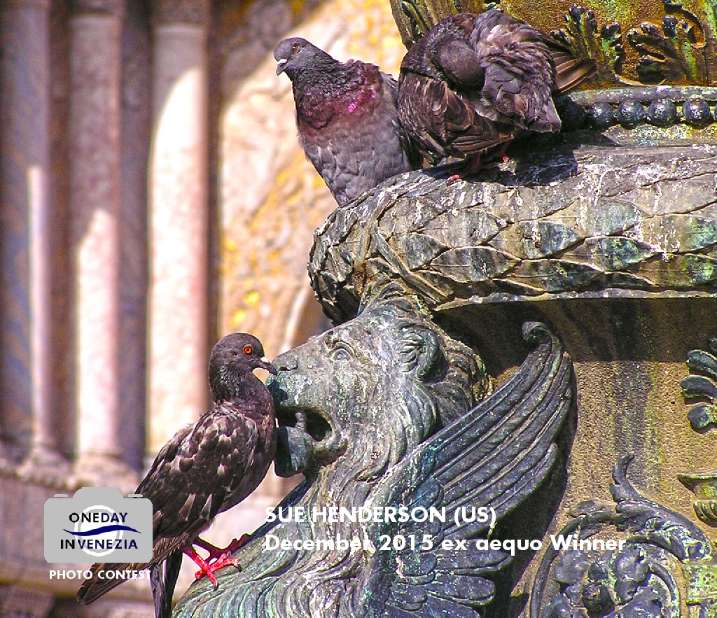 odvdec2015-nosepickin-sue-henderson-1024 http://www.onedayinvenezia.com